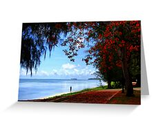 Under The Flame Trees Greeting Card