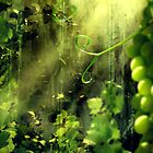 Cottage Vines by Andrew Pearce