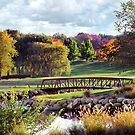 Aldeen Golf Course by Dave Nielsen