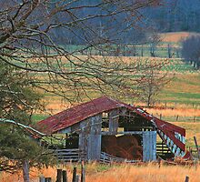 OLD BARN by Chuck Wickham