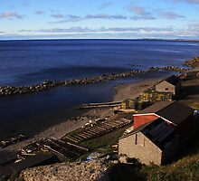 A Gros Morne Fishing Village by Brian Carey
