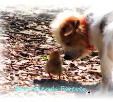 ~My Buddy, and Me~ by NatureGreeting Cards ©ccwri
