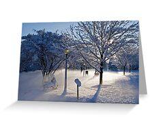Winter's Blanket Greeting Card