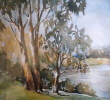 The Goulburn River Seymour by Mrswillow
