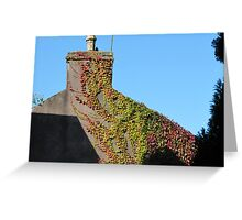 Nature Reclaims Greeting Card