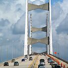 Another View of the Bridge in Jacksonville, Florida by BCallahan