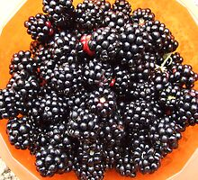 Blackberries harvest by Themis