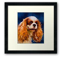 Chelsea - Cavalier King Charles Spaniel Framed Print