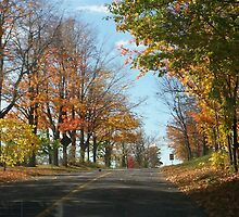 Country road in Autumn by ArtBee