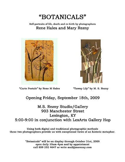 Botanicals: Photographic exhibit announcement by Rene Hales