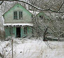 abandoned green house by Lynne Prestebak