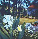 backyard, Mullumbimby by maria paterson