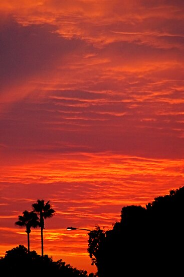 SoCal Sunset 3 by Chet  King