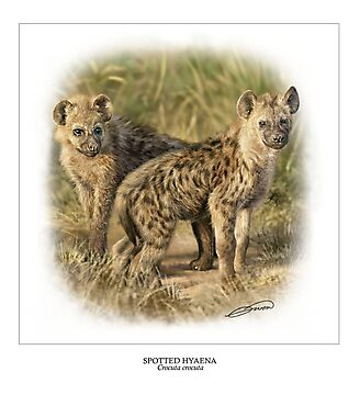 SPOTTED HYAENA 4 by DilettantO