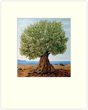 Olive Tree by Gogo Korogiannou