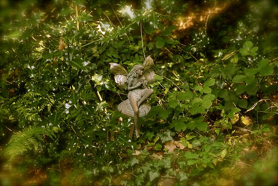 Faerie in the Holly by Chris Edwards
