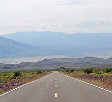Death Valley National Park - Next Lonely Drifter by gail anderson