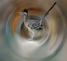Road Runner by LauraStaff