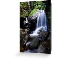 Valley of the Waters Greeting Card