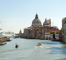Grand Canal and Santa Maria della Salute, Venice by bevanimage