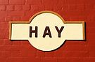 Hay Railway Station by Darren Stones