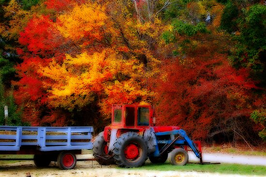Apple Orchard Tractor  II by Monica M. Scanlan