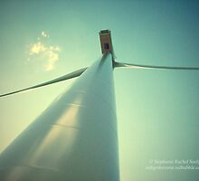 Embracing The Wind by Stephanie Rachel Seely