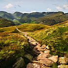 A View of Brothers Water from Place Fell by David Lewins LRPS