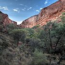 Kings Canyon  Northern Territory by William Bullimore