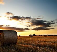 Make hay while the sun shines by Nick Tsiatinis
