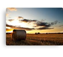 Make hay while the sun shines Canvas Print