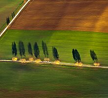 Autumn Shadows, Bavaria by Kasia-D