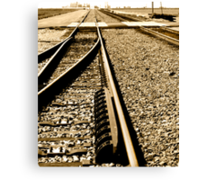 Getting on to the Right Track Canvas Print