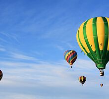 eight hot air balloons by Jamie Roach