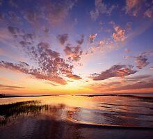 The Bayside by Trevor Murphy