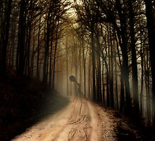 Lost... by Nathalie Chaput