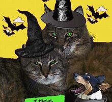 Felines Halloween Party by Terri Chandler