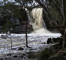 Nigretta Falls by David Smith