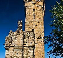 The Wallace Monument by Terry Mooney