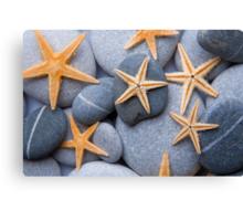 Starfish on a Pebble Beach Canvas Print