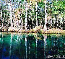 Homosassa Springs by JenicaBelle