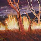 Nightfire at Kakadu by Estelle O'Brien