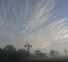 Mist & Mare's Tails - Warrens Lane, Lansdowne by louisegreen
