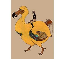 dodo Photographic Print