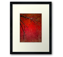 Red Morning Framed Print