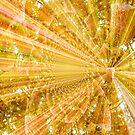Shining Star by Linda Miller Gesualdo