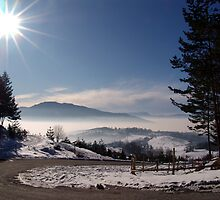 Good Morning Crepoljsko Mountain by Nedim Bosnic