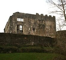 Berry Pomeroy Castle by joybliss