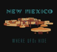 New Mexico - Where UFOs Hide by Sena