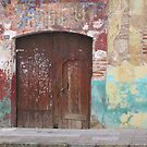 Old Door by Christine Wilson